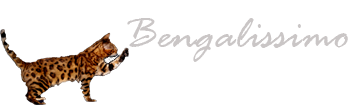 Bengalissimo